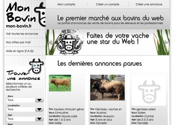 vache-star-du-web.jpg