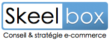conseil-ecommerce-skeelbox.png